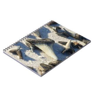 Shark's Tooth Notebook