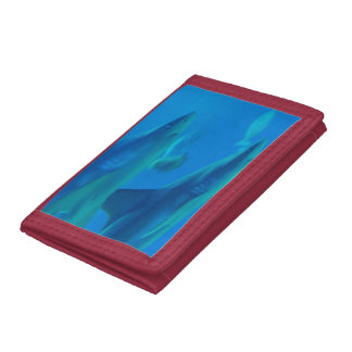 Sharks Trifold Wallet
