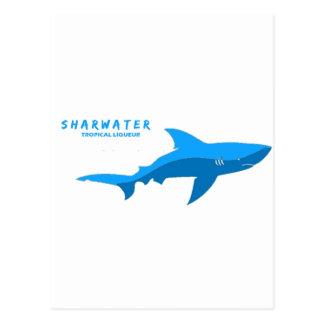 Sharkwater Flyer 5 Postcard
