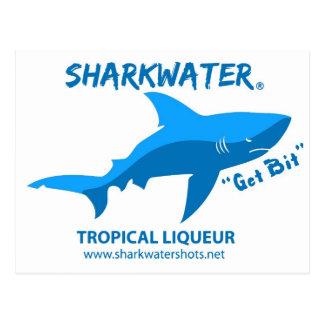 Sharkwater Postcard