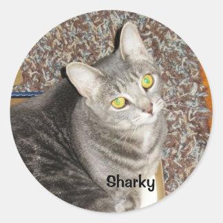 SHARKY STICKER