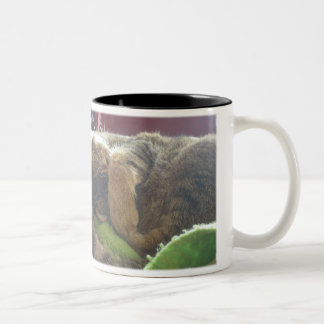 Sharky with Paw Covering Eyesedit, CAN'T A GUY ... Two-Tone Coffee Mug