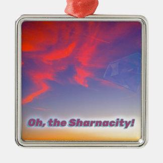 Sharnacity Metal Ornament