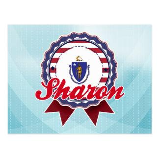 Sharon, MA Postcard