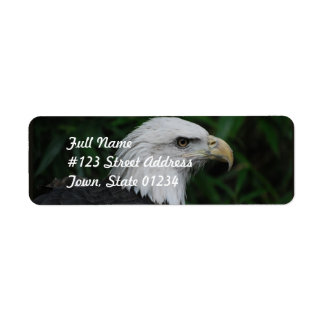 Sharp Beaked Eagle Label