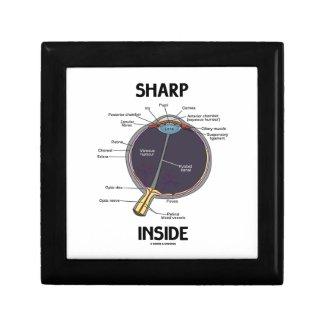Sharp Eye (I) Inside (Anatomical Eyeball) Jewelry Boxes
