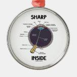 Sharp Eye (I) Inside (Anatomical Eyeball) Christmas Ornament