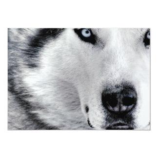 Sharp Eyed Wolf Card