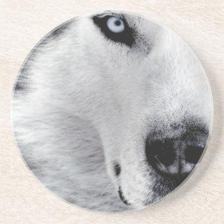 Sharp Eyed Wolf Coaster