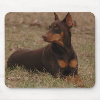 Sharp Red and Rust Female Doberman Pinscher Mouse Pad