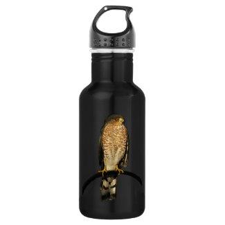 Sharp-Shinned Hawk 18oz Water Bottle