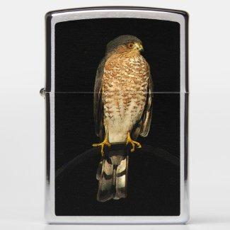 Sharp Shinned Hawk Animal Bird Zippo Lighter