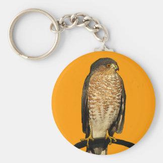 Sharp-Shinned Hawk Basic Round Button Keychain