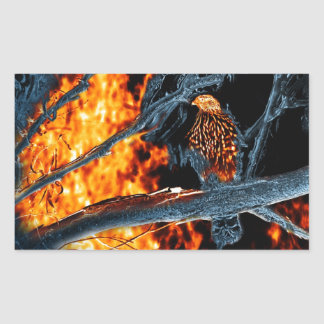 Sharp Shinned Hawk Fire and Ice. (0112) Rectangular Sticker