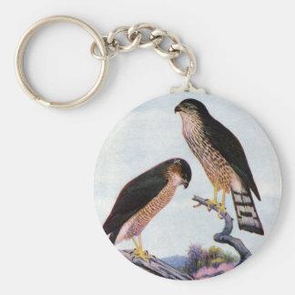 Sharp-shinned Hawks Basic Round Button Keychain