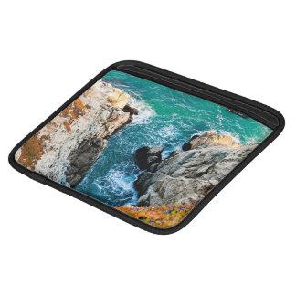 Sharp Themed, View Of The Beautiful Sharp Coral Go iPad Sleeve