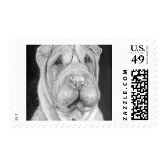 Sharpei Postage Stamp Sm