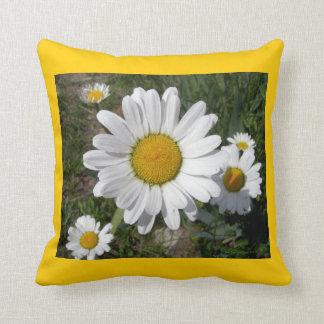 Shasta Daisies (Chrysanthemum maximum) Throw Pillow