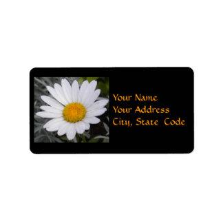 Shasta Daisy Address Labels