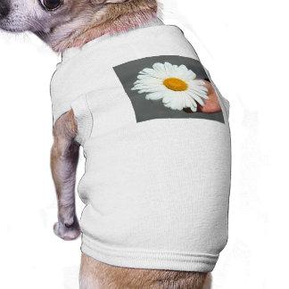 Shasta Daisy Dog T Shirt