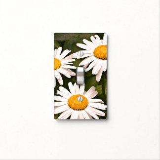 Shasta Daisy Light Switch Cover
