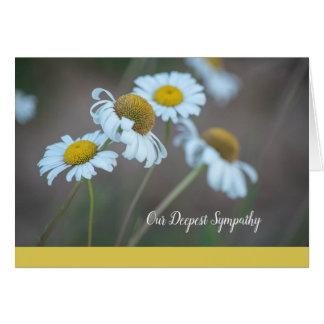 Shasta Daisy Sympathy Card-Blank Inside Card