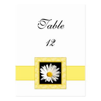 Shasta Daisy Table Number Postcard