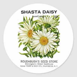 Shasta Daisy Vintage Seed Packet Classic Round Sticker