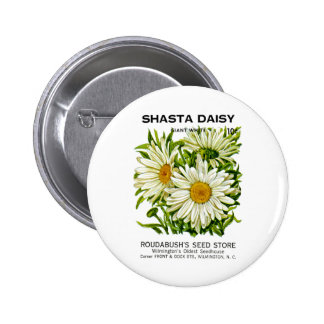 Shasta Daisy Vintage Seed Packet Pinback Button