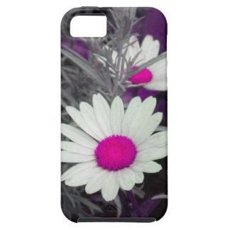 Shasta Daisy (w/Pink) iPhone 5 case