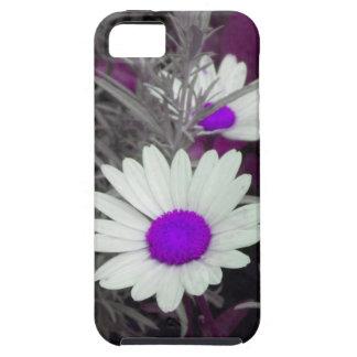 Shasta Daisy (w/Purple) iPhone 5 case