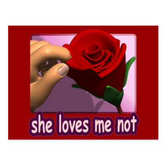 She Loves Me Not Postcard