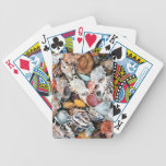 She Sells Sea Shells Bicycle Playing Cards