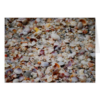 She Sells Sea Shells... Card