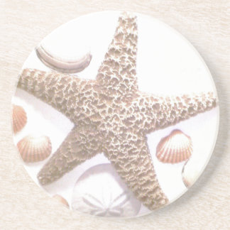 She Sells Sea Shells Sandstone Coaster