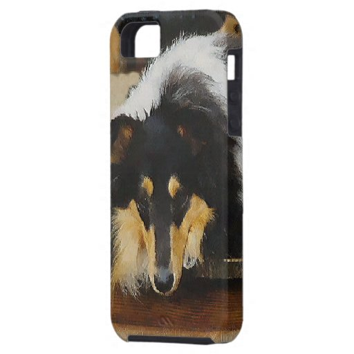 She Waits Tri Color Collie iPhone 5 Cases