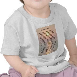 She Walks In Beauty/Cape May Sunset Shirt Infant Tshirt
