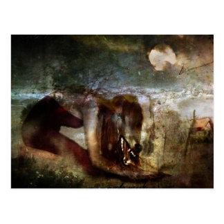 She Wolf Postcard
