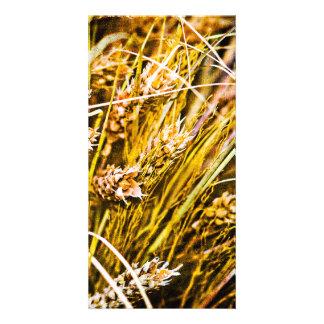 Sheaf Of Wheat - Thank You Card