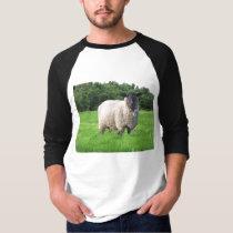 Sheal Basic 3/4 Sleeve Raglan T-Shirt