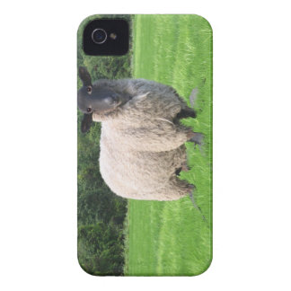 Sheal BlackBerry Bold Case-Mate Barely There™ iPhone 4 Case