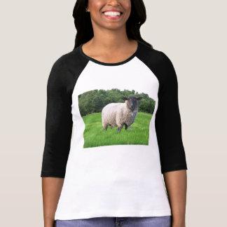 Sheal Ladies 3/4 Sleeve Raglan Fitted Shirts