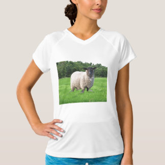 Sheal Ladies Performance Micro-Fiber Sleeveless T-Shirt
