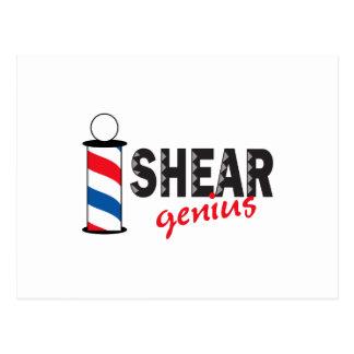 Shear Genius Postcard