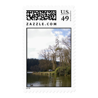 Shear Water 1 Postage Stamp