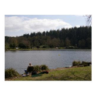 Shear Water 3 Postcard