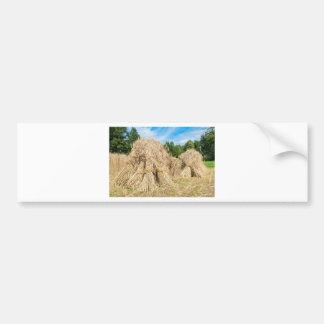 Sheaves of rye standing at rye field bumper sticker