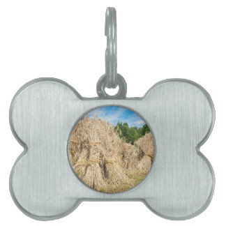 Sheaves of rye standing at rye field pet name tag
