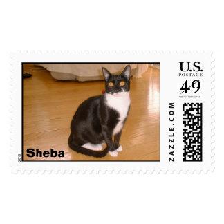 Sheba Sello