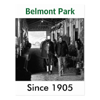 Shed Row at Belmont Park Postcard